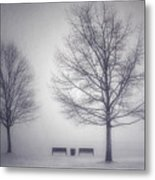 The Soft Breath Of Winter Metal Print