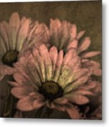 The Soft Glow Of Spring Metal Print