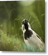 The Sparrow Metal Print