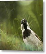 The Sparrow Metal Print