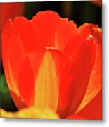 The Stand Out Metal Print