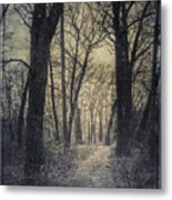 The Starting Point Metal Print