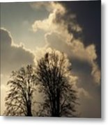 The Storm Iv Metal Print