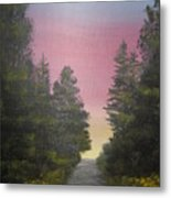 The Straight And Narrow Path Metal Print