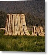 The Stumps Have Eyes Metal Print