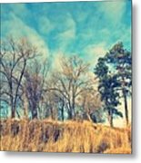 The Sunday Trees Metal Print