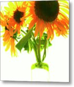 The Sunflowers In A Glass Vase. Metal Print