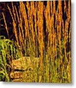 The Tall Grass Metal Print