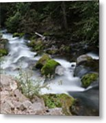 The Tananamawas Flowing Through The Forest Metal Print