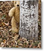 The Teddy Bear In The Woods Metal Print