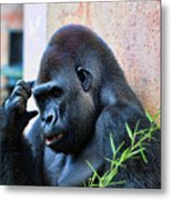 The Thinking Gorilla Metal Print