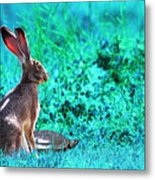 The Tortoise And The Hare . Cyan Metal Print by Wingsdomain Art and Photography