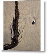 The Toss Metal Print by Peter Tellone