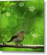 The Touch Of The Spring Metal Print