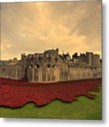 The Tower Poppies  Metal Print