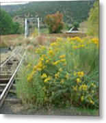 The Tracks At Pagosa Junction Metal Print