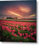 The Tranquil Morning Before Sunrise Metal Print