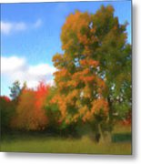 The Transition From Summer To Fall. Metal Print
