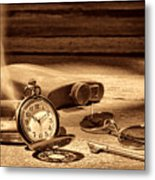 The Traveler  Metal Print