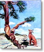 The Tree And The Bobcat Metal Print