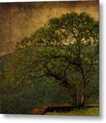 The Tree And The Range Metal Print