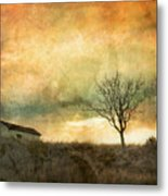 The Tree And The Roof Top Metal Print