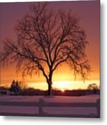 The Tree At Sunset Metal Print