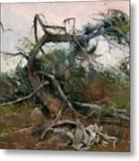 The Tree Gave Its Branches 4 Metal Print