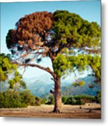 The Tree Of Life And Dead Metal Print