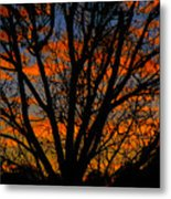 The Tree Of Shapes Metal Print