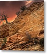 The Tree Of Zion Metal Print
