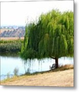 The Tree That Wept Metal Print