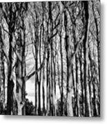 The trees Metal Print