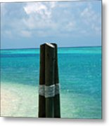 The Triplets Metal Print