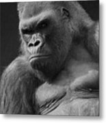The Troop Leader Metal Print