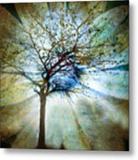 The Truth Of Trees Metal Print