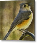 The Tufted Metal Print
