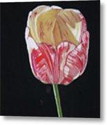 The Tulip Metal Print