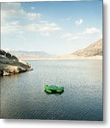 The Turtle That Got Away Metal Print