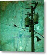 The Urban Crow Metal Print