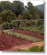 The Vegetable Garden At Monticello II Metal Print