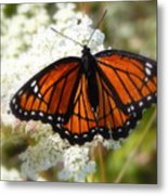 The Viceroy And The Queen Metal Print