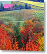 The View From Red Ridge Metal Print
