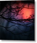 The Warm Light Metal Print