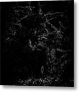 The Watcher In The Woods. A  A Dark Mysterious Fairytale Fine Art Photographic Print Metal Print