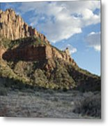The Watchman Metal Print by Kenneth Hadlock