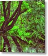 The Water Margins - Nutclough Woods Metal Print