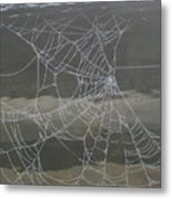 The Web Metal Print