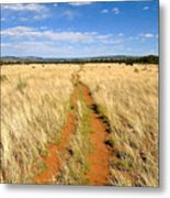 The Westward Trail Metal Print
