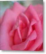 The Whisper Of A Rose Metal Print